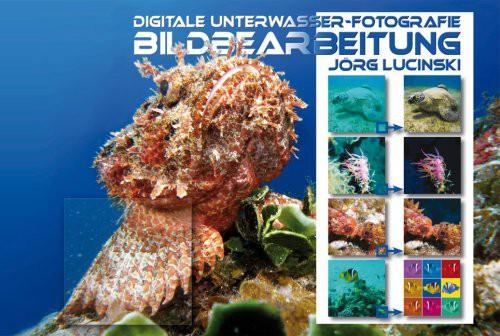 Digitale Unterwasserfotografie - Bildbearbeitung